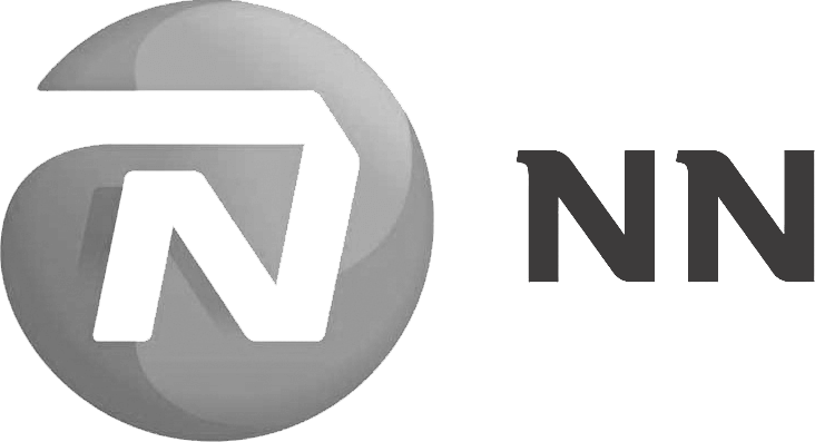 NN Group  (Nationale Nederlanden) logo